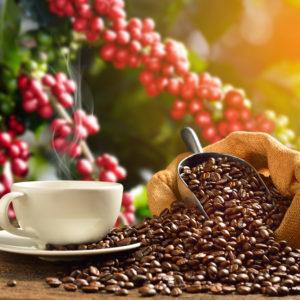フレーバーコーヒーの豆